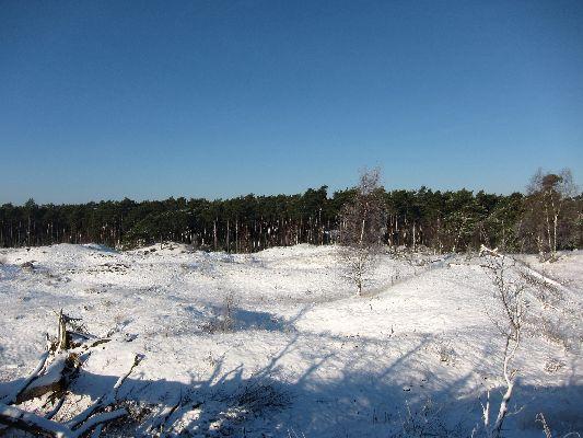 Sneeuw_Leuvenumseveld_01