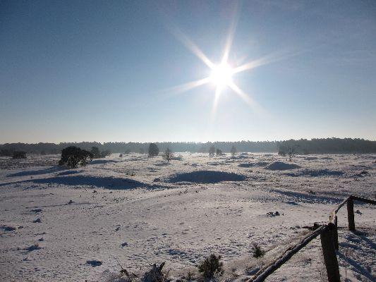 Sneeuw_Leuvenumseveld_02
