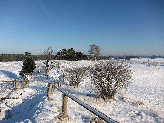 Sneeuw_Leuvenumseveld_04