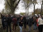 2013-11-26_Zwolle_Sperweruil_08
