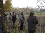 2013-11-26_Zwolle_Sperweruil_09