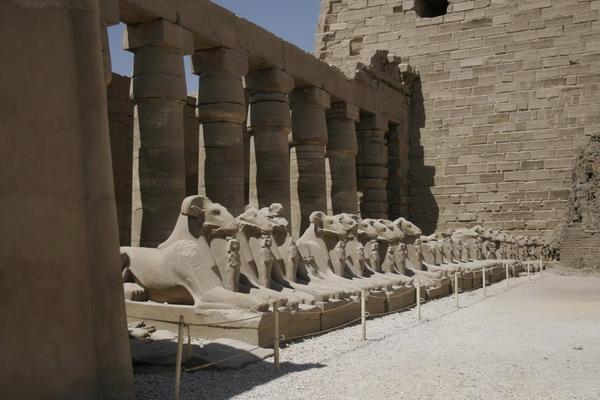 (c) 2006 jcdv - Sfinxen in Karnak.