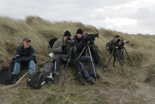 (c) 2007 Zeetrek waarnemen langs de kust van Schiermonnikoog.