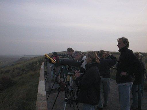 Avifauna Groningen in actie bij de Slufter.