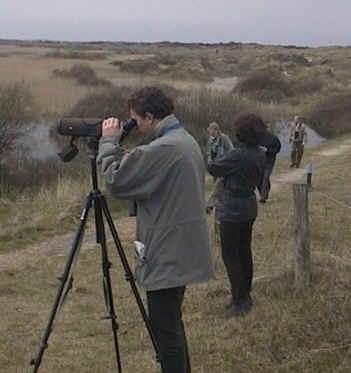 Excursie van de vogelaar nieuwsgroep op Texel 2002